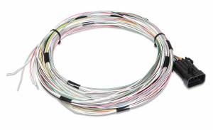 Fuses & Wiring - Transmission Wiring Harnesses