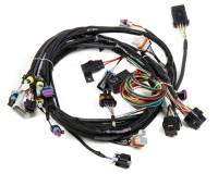 Holley Performance Products - Holley LS1 Main Harness for HP EFI & Dominator EFI