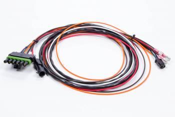 MSD - MSD Wiring Harness