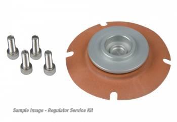 Aeromotive - Aeromotive Regulator Service Kit