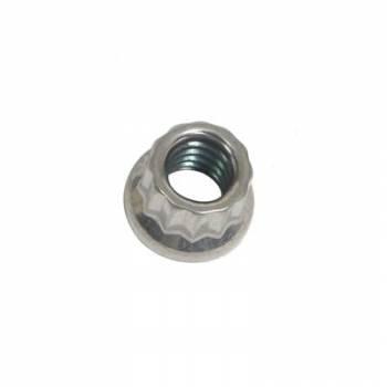 ARP - ARP Stainless Steel 12 Point Nut - 1/4-20 (1)