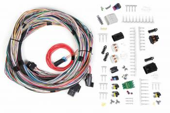 Holley Performance Products - Holley Unterminated Universal Main Harness for HP EFI & Dominator EFI