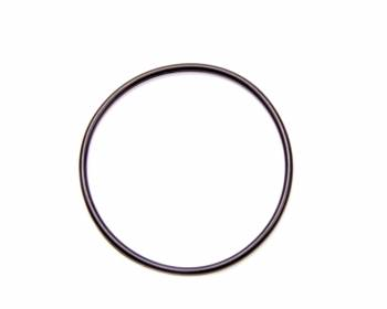 DMI - DMI CT1 O-Ring for Seal Plate Flange