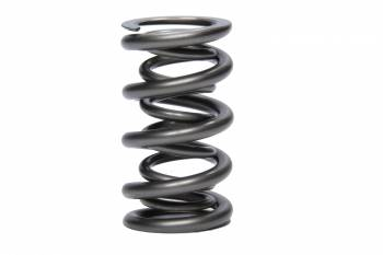 PAC Racing Springs - PAC Racing Springs 1.500 Dual Valve Spring (1)