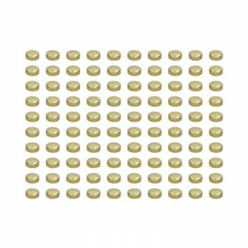 Pioneer Automotive Products - Pioneer Automotive Products Expansion Plugs - 1-5/8 Brass (100pk)
