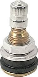 Allstar Performance - Allstar Performance Brass Bolt-In Valve Stem