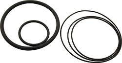 "Allstar Performance - Allstar Performance Replacement O-Ring Kit for ALL64220 Hydraulic Adjuster for 2.5"" Springs"
