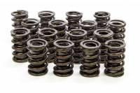 "Engine Components - Isky Cams - Isky Cams 1.530"" Valve Springs"