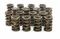 Engine Components - Isky Cams - Isky Cams 1.560 Valve Springs