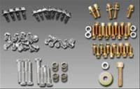 Milodon - Milodon SB Chevy Engine Fastener Kit w/o Head Bolts - Image 2