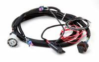 Fuel Injection - Fuel Injection System Wiring Harnesses - Holley Performance Products - Holley GM 4L60/80E Transmission Harness