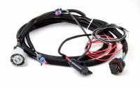 Holley Performance Products - Holley GM 4L60/80E Transmission Harness - Image 3