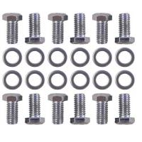 Trans-Dapt Performance - Trans-Dapt Differential Cover Bolts - Chrome - Image 2