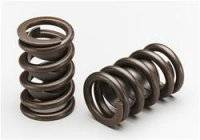 Valve Springs and Components - Valve Springs - Lunati Valve Springs