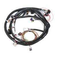 Fuel Injection - Fuel Injection System Wiring Harnesses - Holley Performance Products - Holley LS2 Main Harness for HP EFI & Dominator EFI