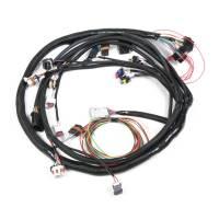 Holley LS2 Main Harness for HP EFI & Dominator EFI