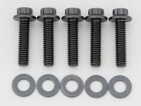 "Stainless Steel Bolts - 5/16""-18 Stainless Steel Bolts - ARP - ARP Bolt Kit - 12 Point (5) 5/16-18 x 1.250"