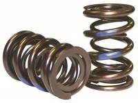 Engine Components - Howards Cams - Howards Electro Polished Pro-Alloy Mechanical Roller  Dual Valve Springs - 1.625