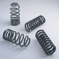 Ford Mustang (4th Gen) Springs and Components - Ford Mustang (4th Gen) Coil Springs - Ford Racing - Ford Racing Mustang Super Handling Kit