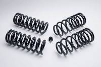 Suspension Components - Ford Racing - Ford Racing Coil Spring Kit 94-00 Mustang