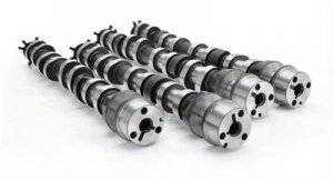 Camshafts - Hydraulic Roller Cams - Hydraulic Roller Cams - Ford 5.0 Coyote