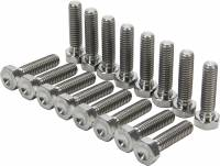 Hardware & Fasteners - Beadlock Bolts - Allstar Performance - Allstar Performance Titanium Bead Lock Bolt Kit