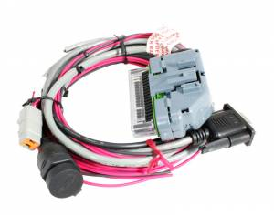 Engine Wiring Harnesses - NEW