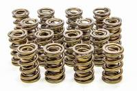 "Valve Springs - Isky Cams RAD-9000 Precision Tool Room Valve Springs - Isky Cams - Isky Cams RAD-9000 Valve Spring Dual Spring/Damper 650 lb/in Spring Rate 1.150"" Coil Bind - 1.600"" OD"