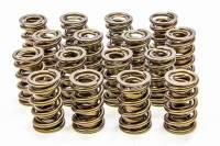 "Valve Springs - Isky Cams RAD-9000 Precision Tool Room Valve Springs - Isky Cams - Isky Cams RAD-9000 Valve Spring Dual Spring/Damper 550 lb/in Spring Rate 1.150"" Coil Bind - 1.570"" OD"