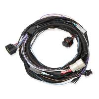 Wiring Harnesses - Transmission Wiring Harnesses - Holley Performance Products - Holley Ford 4R70W/4R75W Transmission Control Harness 98-03