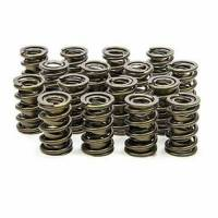 "Valve Springs - Isky Cams RAD-9000 Precision Tool Room Valve Springs - Isky Cams - Isky Cams Dual Valve Springs - 1.570"""