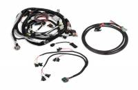 Fuel Injection Systems and Components - Electronic - Fuel Injection System Wiring Harnesses - Holley Performance Products - Holley EFI Wiring Harness Kit - GM LS2/LS3/LS7