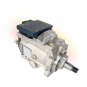 Air & Fuel System - Fuel Injection Systems and Components - Electronic - Fuel Injector Pump Covers