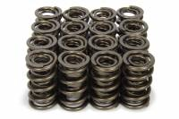 Engine Components - Isky Cams - Isky Cams 1.570 Valve Springs