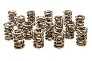 Valve Springs and Components - Valve Springs - PAC Hot Rod Series Dual Valve Springs