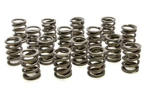Valve Springs and Components - Valve Springs - PAC Hot Rod Series Single Valve Springs