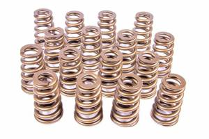 Valve Springs and Components - Valve Springs - PAC 1400 Series Stock Eliminator Ovate Beehive Valve Springs