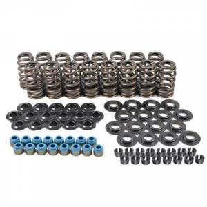Valve Springs and Components - Valve Springs - PAC Cylinder Head Valve Spring Kits