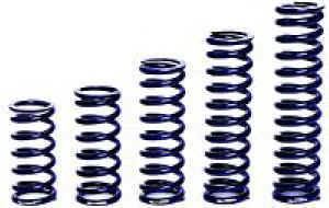 Chassis & Suspension - Springs - Coil-Over Springs